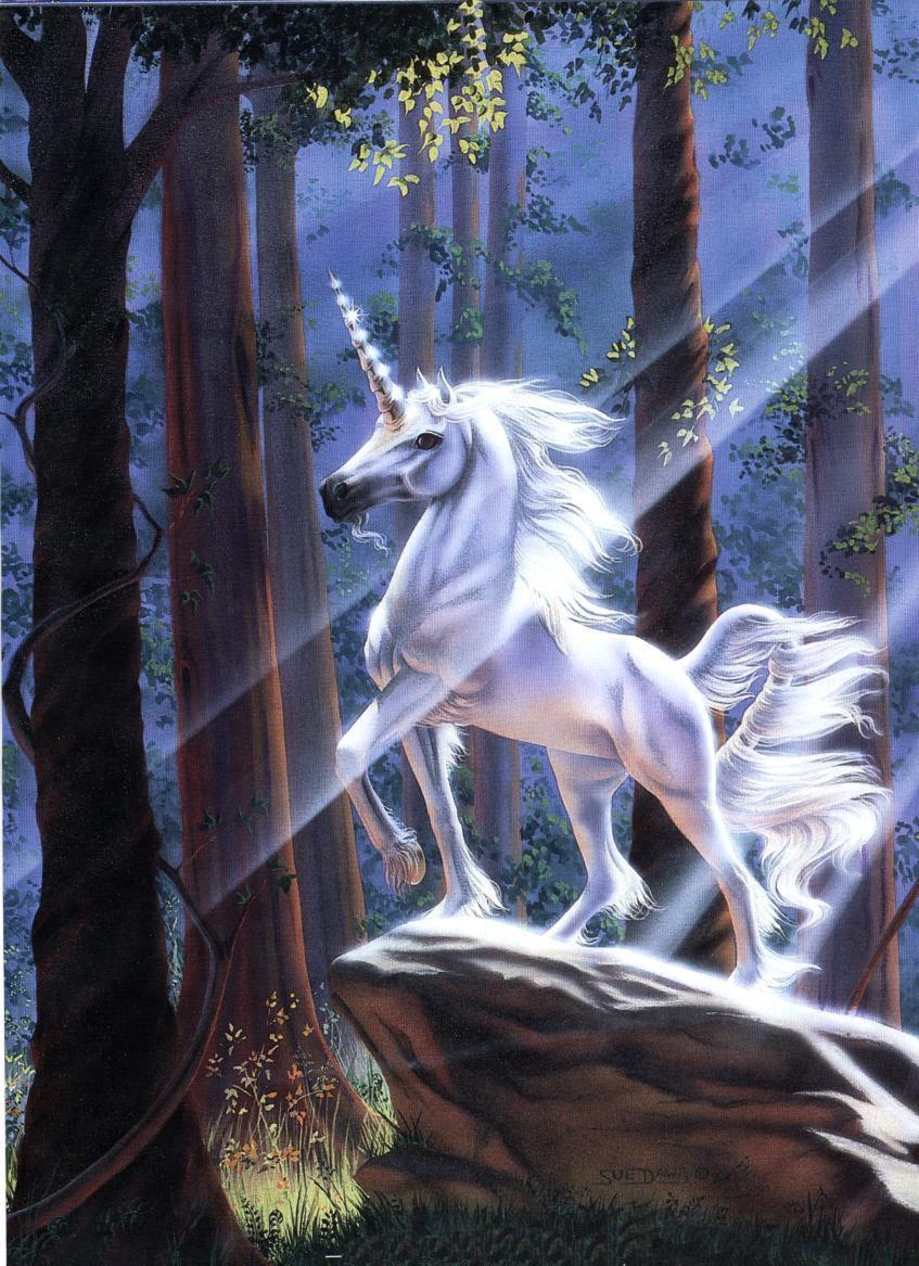 unicorn50.jpg
